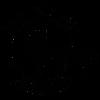 Good Luck Wolf Logo